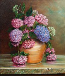 Hydrangeas in Terracotta Pot