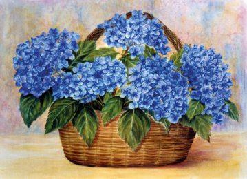 Hydrangeas in a Basket